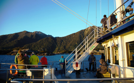 Real Journeys ForestBird Doubtful Sound Sept 2017